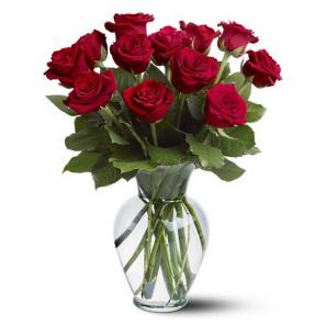 12 Long Stem Red Rose Special
