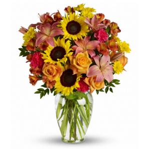 Autumn Fields buy at Florist