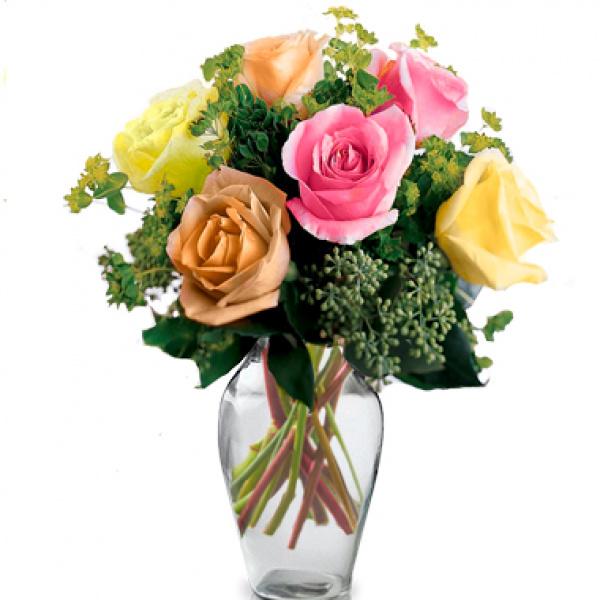 Half Dozen Mixed Roses